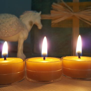 Beeswax candles purify the air