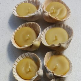 Seashell candles (limited edition). The latest addition to our candles family!