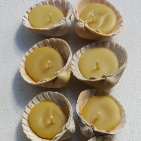 Beeswax candles - seashells