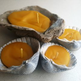Irish Seashell Candles – set of 4. Burning time up to 3 hours